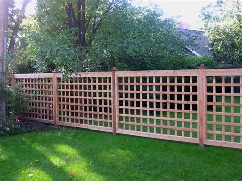 cheap easy dog fence   popular dog fence options