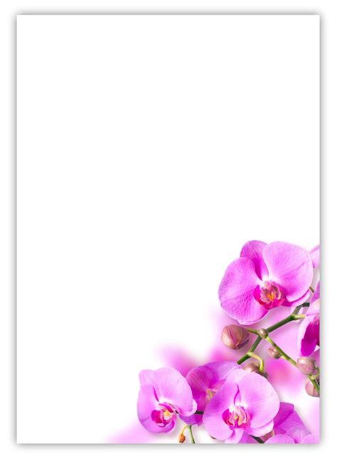 blatt motivpapier   blumen rosa pink orchideen