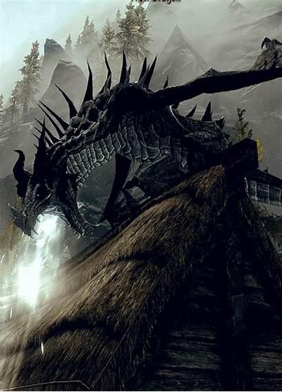 Dragon Fantasy Animated Dragons Gifs Cool Skyrim