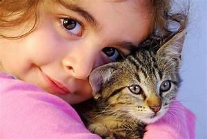 Mit Katze Umziehen : katzen babys an die neue umgebung sowie weitere tiere und ~ Michelbontemps.com Haus und Dekorationen