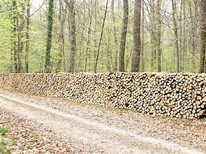 Bois De Chauffage Bordeaux : troc echange bois de chauffage sur france ~ Dailycaller-alerts.com Idées de Décoration