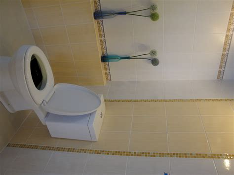 Using A Mosaic Tile As A Vertical Border Around A Toilet