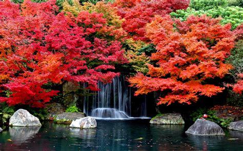 Fall Backgrounds For Desktop by Autumn Falls Desktop Background Hd Wallpapers 1629361