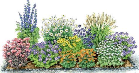 pflanzen die schnecken nicht mö zum nachpflanzen ein bl 252 hendes beet aus