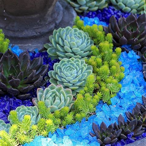 Awesome Container Garden with Succulents: 45+ Best Design Ideas / FresHOUZ.com