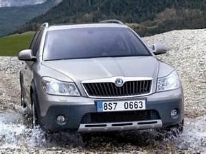 Auto Ohne Bank Finanzieren : skoda octavia auto pkw finanzierung ohne schufa ~ Jslefanu.com Haus und Dekorationen