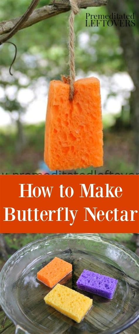 how to make butterfly nectar nectar recipe butterfly