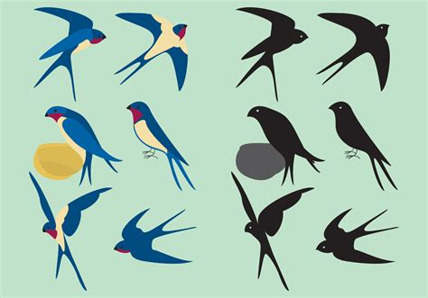 colorful swallows download free vector art stock