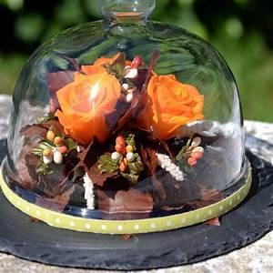 Rose Eternelle Sous Cloche : rose eternelle sous cloche rose ternelle sous cloche en ~ Farleysfitness.com Idées de Décoration