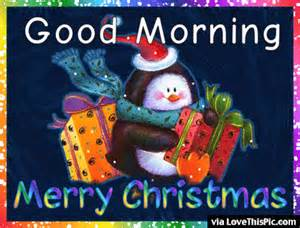morning merry gif pictures photos and images for