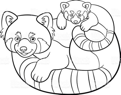 coloring pages mother red panda   cute baby