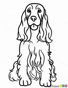 How To Draw Cocker Spaniel Dogs And Puppies Cocker