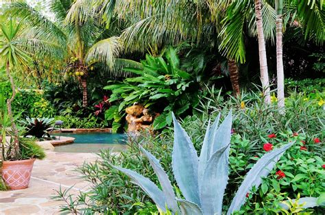 tropical landscapes tropical landscape garden design miami knoll landscape