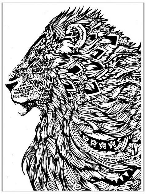 Free Lion Coloring Pages For Adult   Lion coloring pages