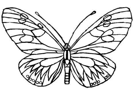 Coloring Images Of Butterflies by Butterfly Coloring Pages