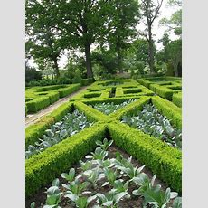 What Is A Formal Garden Design  Information And Ideas For