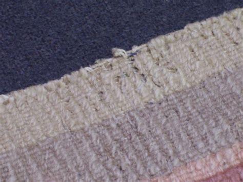 was tun bei motten motten im teppich was tun erste hilfe teppichreinigung vorwerk
