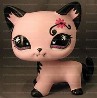 Best Lps Cat Ideas And Images On Bing Find What Youll Love