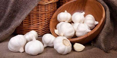 enam khasiat bawang putih  kesehatan  kecantikan