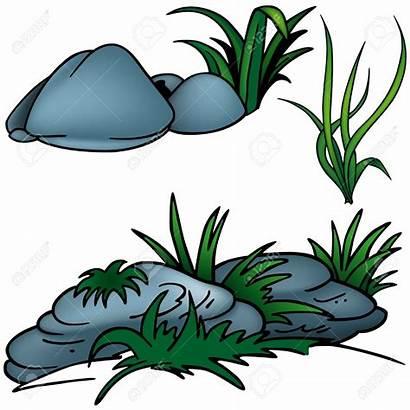 Rock Clipart Clip Grass Rocks Sea Stone
