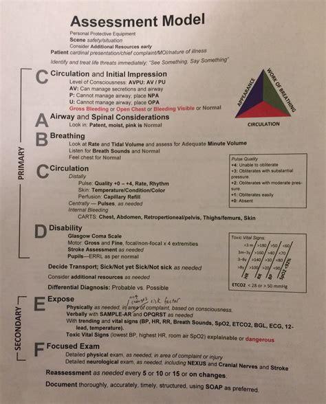 patient assessment model nurse study notes nursing