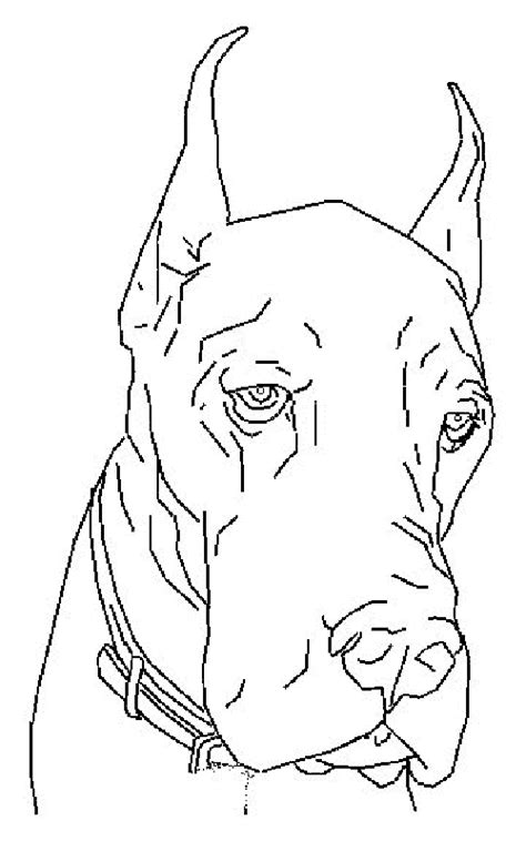 Great Dane Dog   Colouring Pages for kids   Dog coloring