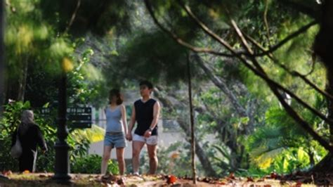 Botanischer Garten Singapur Weltkulturerbe by Botanischer Garten In Singapur Visit Singapore