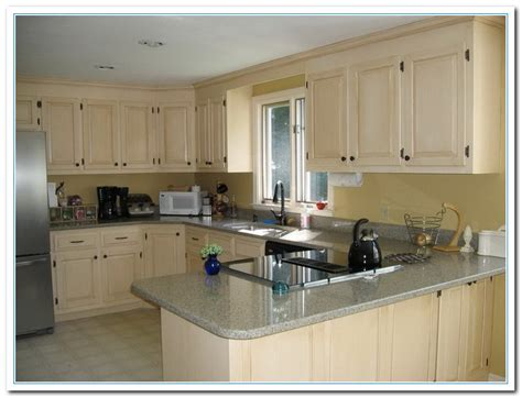 colour ideas for kitchen inspiring painted cabinet colors ideas home and cabinet