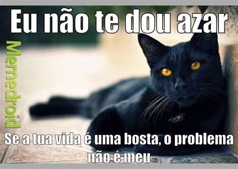 Gato Meme - the best gatos memes memedroid
