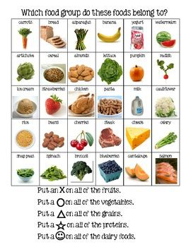food groups sorting activity by the project tpt 135 | original 390185 1