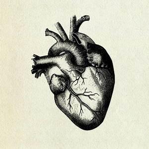 grey's anatomy – notakarentheworld
