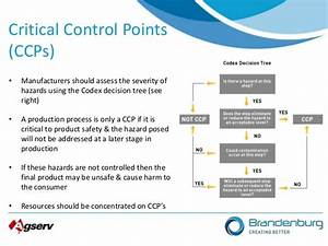 Food Safety And Haccp