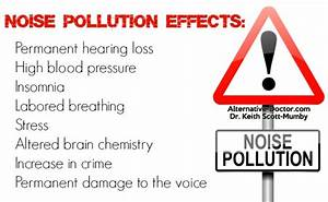 Noise Pollution Effects: Can Noise Make You Stupid?