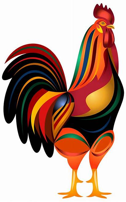 Rooster Transparent Clipart Clip Gallo Animated Bird