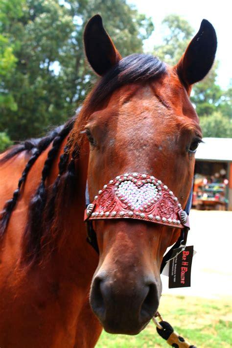 horse halters halter tack bronc barrel racing western bridle horses cute saddles riding nose pink super gear pretty heart walker