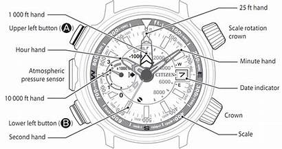 Anatomy Citizen Altichron 06e Automatic Keeping Normal