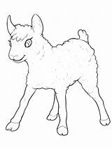 Coloring Lamb Little Fun Sheep Pages Animals Goats sketch template