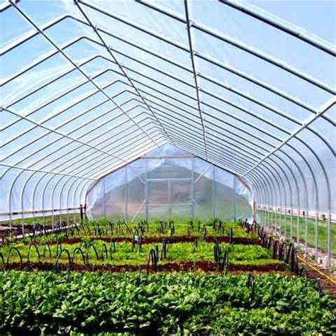 greenhouses frame gothic cold commercial tunnel greenhouse houses garden arch ontario kits farm farmtek growers supply property info