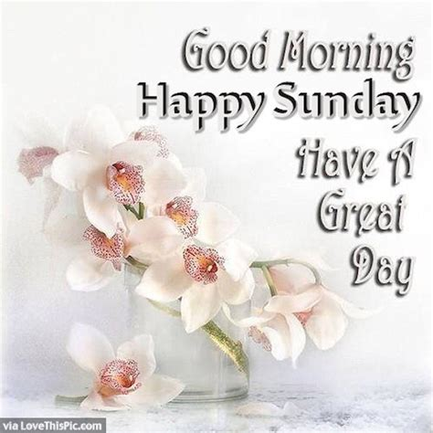 Sunday Morning Images Morning Happy Sunday Image Pictures Photos And