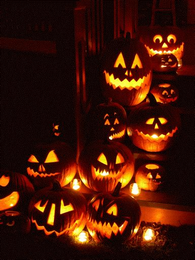 halloween lustige bilder sprueche witze echt lustig