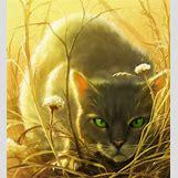 Warriors Cats Crookedstar | 580 x 634 png 551kB