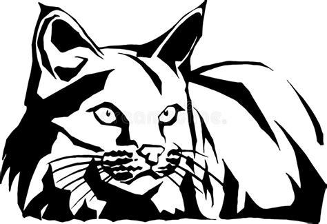 wildcat illustration stock vector image  felidae