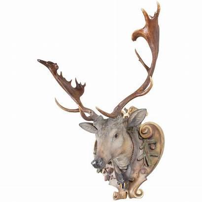 Carved Fallow Eckartsau Antlers Habsburg Deer Antique