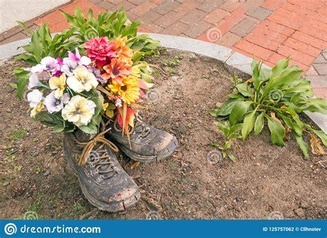 Blommor Som Planteras I Gamla Par, Arbetar, Eller Att ...