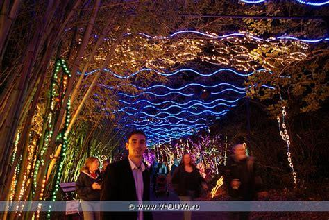magic in lights bellingrath gardens flickr