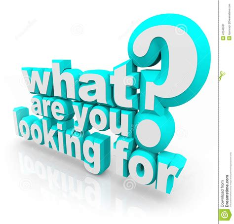 What Are You Looking For Question Mission Quest Goal