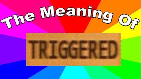 Meaning Of Meme In English - what is a triggered meme the meaning and definition of triggered memes youtube