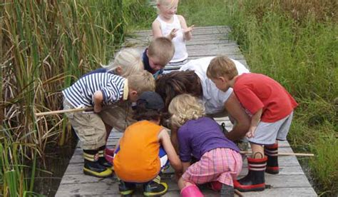 nature preschool schlitz audubon nature center 914 | 01 preschool