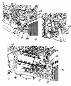 2010 Jeep Grand Cherokee Line  A  C Discharge  Engine  Hemi