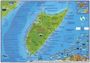 Cozumel Snorkeling Map